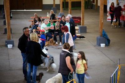 Hundeausstellung Ebersberg 2016